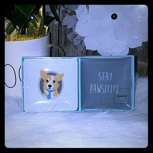 Fringe stay pawsitive set of two porcelain tray